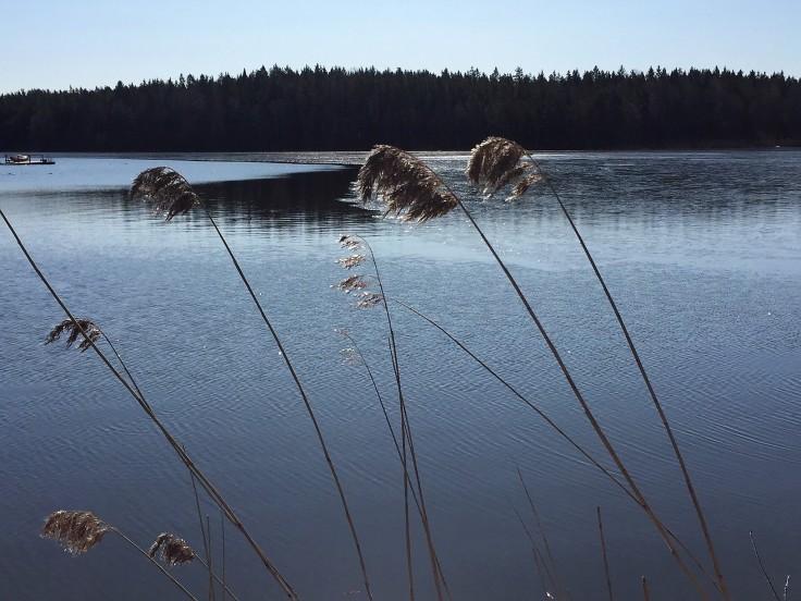 lite is på sjön